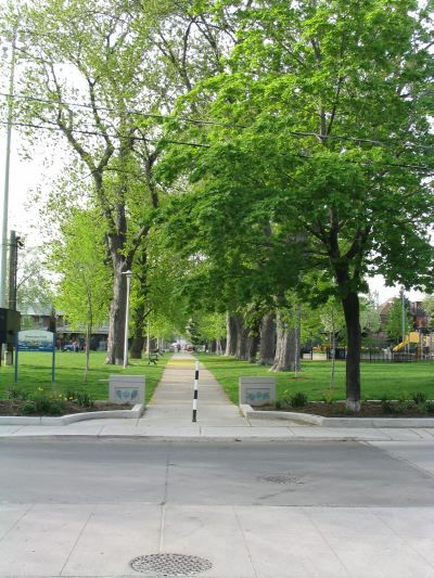 Dovercourt Park - Spring
